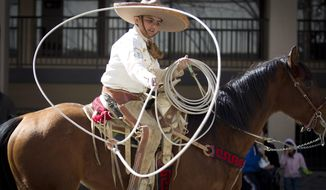 Ropers and riders from Lienzo Charro joined the Fort Worth Stock Show and Rodeo All Western Parade on Saturday, Jan. 18, 2014. (AP Photo/Star-Telegram, Joyce Marshall)