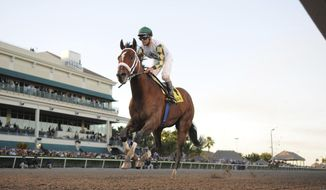 In a photo provided by Gulfstream Park, Mucho Macho Man, with jockey Gary Stevens, wins the Florida Sunshine Millions Classic horse race at Gulfstream Park on Saturday, Jan. 18, 2014, in Hallandale Beach, Fla. (AP Photo/Gulfstream Park, Adam Coglianese)