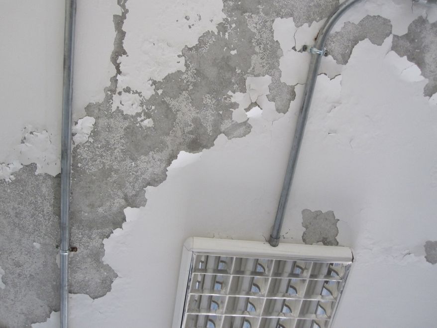 Paint peeling off classroom ceiling of the Balkh Education Facility in Afghanistan.