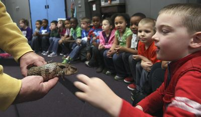 In this Dec. 19, 2013 photo, kindergartner Luke Scott quickly touches while marveling at a blue tongue skink held by Scovill Zoo volunteer Bob Luther during a recent Scovill Zoo Mobile Zoo visit to Baum School in Decatur, Ill. (AP Photo/Herald & Review, Jim Bowling)