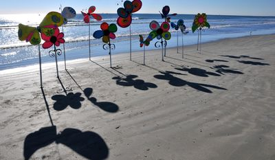 "ADVANCE FOR THE WEEKEND OF FEB. 1-2 AND THEREAFTER - In a Jan. 23, 2014 photo, Minneapolis-based artist David Cook ""plants"" the beach with his flowers, made of duct tape, cardboard, wooden sticks and wire, on the beach in front of Ron Jons Cape Caribe Resort in Brevard, Fla. He spends hours and days designing and creating large colorful butterflies, flowers and whatever he thinks of, to surprise passersby at different locations. (AP Photo/Florida Today, Malcolm Denemark)  NO SALES"