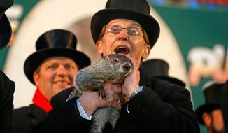 Punxsutawney Phil is held by Ron Ploucha after emerging from his burrow Sunday on Gobbler's Knob in Punxsutawney, Pa. Pennsylvania's famed groundhog saw his shadow, thereby forecasting another six weeks of winter. Thousands turned out for the annual Groundhog Day event. (associated press)