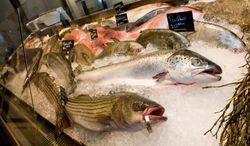 ** FILE ** This Tuesday, Aug 31, 2010, photo shows fish on display for sale at Eataly's grand opening in New York. (AP Photo/Charles Sykes)