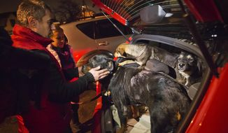 Stray dogs brought out of Sochi by activist Yulia Krasova, second from left, wait to be transferred to the car of fellow activist Igor Airapetian, left, at a rendezvous point 120 kilometers away from the Olympic area in the early morning hours of Tuesday, Feb. 11, 2014, in Tuapse, Russia. Krasova is one of a dozen people in the emerging movement of animal activists in Sochi alarmed by reports that the city has contracted the killing of thousands of stray dogs before and during the Olympic Games. Stray dogs are a common sight on the streets of Russian cities, but with massive construction in the area the street dog population in Sochi and the Olympic park has soared. Useful as noisy, guard dogs, workers feed them to keep them nearby and protect buildings. They soon lose their value and become strays. Tonight, a few dogs will be taken on their way to a new life in Moscow. (AP Photo/David Goldman)
