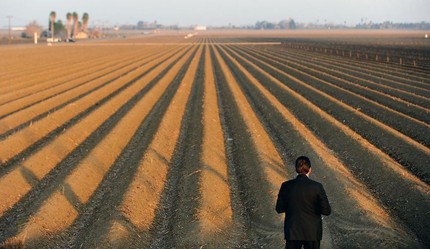 A sercret service agent looks over a farm field as President Barack Obama speaks to the media on California's drought situation Friday, Feb. 14, 2014 in Los Banos, Calif. Farmers in California's drought-stricken Central Valley said the financial assistance President Barack Obama delivered on his visit Friday does not get to the heart of California's long-term water problems. (AP Photo/Los Angeles Times, Wally Skalij, Pool)