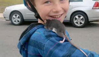 This undated photo released by Gomez Trial Attorneys courtesy the Pankey family, shows Aidan Pankey and one of his pet rats. Lawyers representing the Pankey family have filed a lawsuit against Petco Animal Supplies Inc., saying Aidan died from rat-bite fever contracted from a male rat purchased at one of the national chain's stores. (AP Photo/Courtesy Pankey Family)