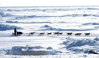 FILE - In this March 13, 2013 file photo, Musher Michelle Phillips of Tagish, Yukon Territory, Canada, makes the final push in the Iditarod, on the Bering Sea  for the finish line outside Nome, Alaska. Warm weather during much of the winter across Alaska nearly prompted officials at the Iditarod Trail Sled Dog Race to move the start to Fairbanks for the first time in a decade. But temperatures have dropped, and the 42nd running of the race across Alaska will start just as normal this weekend in Anchorage. (AP Photo/Mark Thiessen, File)
