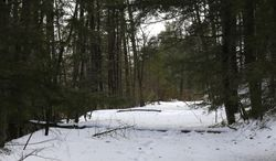 A pathway is seen running through a ravine on Wednesday, Feb. 26, 2014, in Lake George, N.Y. In the 1990s, businessman Anthony Tomasovic was granted permission to fill in his vacant, sloping property bordering the ravine where British Colonial troops and their Mohawk Indian allies were ambushed by a larger force of French and Indians in 1755. The land borders the wooded ravine where about 1,000 British Colonial troops and 200 of their Mohawk Indian allies were ambushed by a larger force of French and Indians on the morning of Sept. 8, 1755.  Patten is convinced many of the scores of casualties from the ambush were buried afterward in the ravine. (AP Photo/Mike Groll)