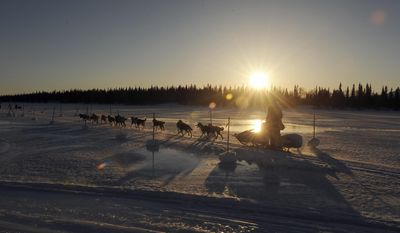Mike Santos drives his dog team into the Finger Lake checkpoint during the 2014 Iditarod Trail Sled Dog Race on Monday, March 3, 2014, near Wasilla, Alaska. (AP Photo/The Anchorage Daily News, Bob Hallinen)
