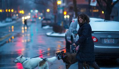 Janis Lozano crosses S. Elms Street in a snowstorm with her dogs on Monday, March 3, 2014, in Greensboro, N.C. Iris is a Siberian-Australian shepherd mix, and Orion, is a boxer-pit bull mix. (AP Photo/News & Record, Jerry Wolford)