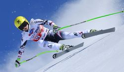 Austria's Anna Fenninger speeds down the course on her way to take sixth place in a women's alpine skiing downhill at the World Cup finals in Lenzerheide, Switzerland, Wednesday, March 12, 2013. Anna Fenninger was second in the downhill standings. (AP Photo/Shinichiro Tanaka)