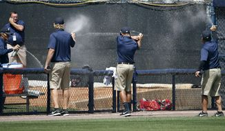 Groundskeepers spray insecticide on a swarm of bees that came from left field into the Boston Red Sox bullpen in the bottom of the third inning of a spring exhibition baseball game against the New York Yankees in Tampa, Fla., Tuesday, March 18, 2014. The game was delayed while the swarm was eradicated. (AP Photo/Kathy Willens)