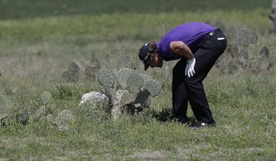 Andrew Loupe looks at his lie on the second hole during the final round of the Texas Open golf tournament on Sunday, March 30, 2014, in San Antonio. (AP Photo/Eric Gay)