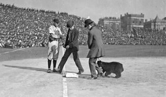 ADVANCE FOR USE MONDAY, MARCH 31 AND THEREAFTER - This 1916 photo provided by the Chicago History Museum shows two men walking with a bear cub near third base on the field at Weeghman Park in Chicago, later to be named Wrigley Field, during a Chicago Cubs baseball game. It is one of the memorable moments in Wrigley Field history as the ballpark approaches it's 100th anniversary. (AP Photo/Courtesy of the Chicago Historical Museum)