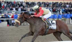 In this photo provided by the New York Racing Association, Wicked Strong, with Rajiv Maragh aboard, captures The Wood Memorial Stakes horse race at Aqueduct Race Track in New York, Saturday, April 5, 2014. (AP Photo/New York Racing Association, Chelsea Durand)