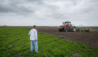 """John Wikoff, left, watches as John Elliott plants corn in what was once a rice field, Wednesday, March 19, 2014, in Bay City. """"It's disheartening to lose your rice farming and your livelihood,"""" Elliott said. """"I hope we can survive this; we had to retool and spend over $250,000 to buy a planter, tractor and equipment."""" Matagorda County farmers are being forced to downsize their farming operation and change crops, from rice to dry land corn, due to a lack of irrigation water for the third consecutive year from the Colorado River. (AP Photo/Houston Chronicle, Michael Paulsen/File)"""