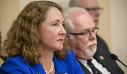 Rep. Elizabeth Esty, D-Conn., who represents Newtown, Conn., and Rep. Ron Barber, D-Ariz., who took over for Rep. Gabby Giffords who was severely injured in a shooting in Tuscon, Ariz., sit together at a special House Democratic Steering and Policy Committee hearing on gun violence on Capitol Hill in Washington, Wednesday, Jan. 16, 2013. The lawmakers heard from a witness panel that included Newtown, Conn. School Superintendent Janet Robinson, Emily Nottingham, mother of Tucson shooting victim Gabe Zimmerman, Chaska, Minnesota Police Chief Scott Knight, and Philadelphia Mayor Michael Nutter.  (AP Photo/J. Scott Applewhite)