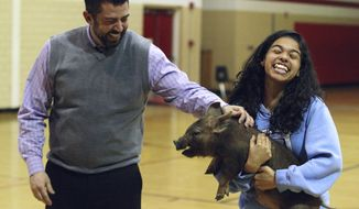 ADVANCE FOR USE SATURDAY, APRIL 12 AND THEREAFTER - In this March 25, 2014, photo, eighth-grader Lauryn Layette clings to a squirming pig as principal Nate Sheppard prepares to kiss it during an assembly at Thomas Jefferson Middle School in Decatur, Ill. Thomas Jefferson students who were on time every day of ISAT testing were rewarded by getting to watch their principal pucker up to the pig. (AP Photo/Herald & Review, Jim Bowling)