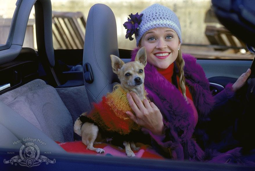 """Actress Reese Witherspoon and her pet pooch in the movie """"Legally Blonde."""""""