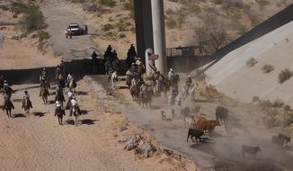 The Bundy family and their supporters drive their cattle back onto public land outside of Bunkerville, Nev. after they were released by the Bureau of Land Management on April 12, 2014. (AP Photo/Las Vegas Review-Journal, Jason Bean)