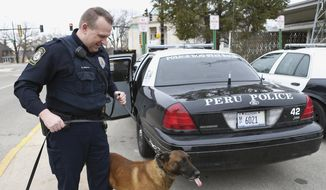 In this April 1, 2014, photo, Peru, Ill., canine officer Matt Heiden is seen with his partner Tito, a  6-year-old Belgian Malinois. The two have worked together on patrol since 2010. That ended recently when Heiden and the department decided to retire Tito due to arthritic hips and a degenerative spine. Heiden took permanent ownership of the retired Tito by signing paperwork and paying $1 to the department. (AP Photo/NewsTribune, Chris Yucus) ** FILE **