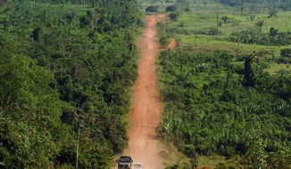 ** FILE ** A paved road along the Amazon rainforest. (Associated Press)