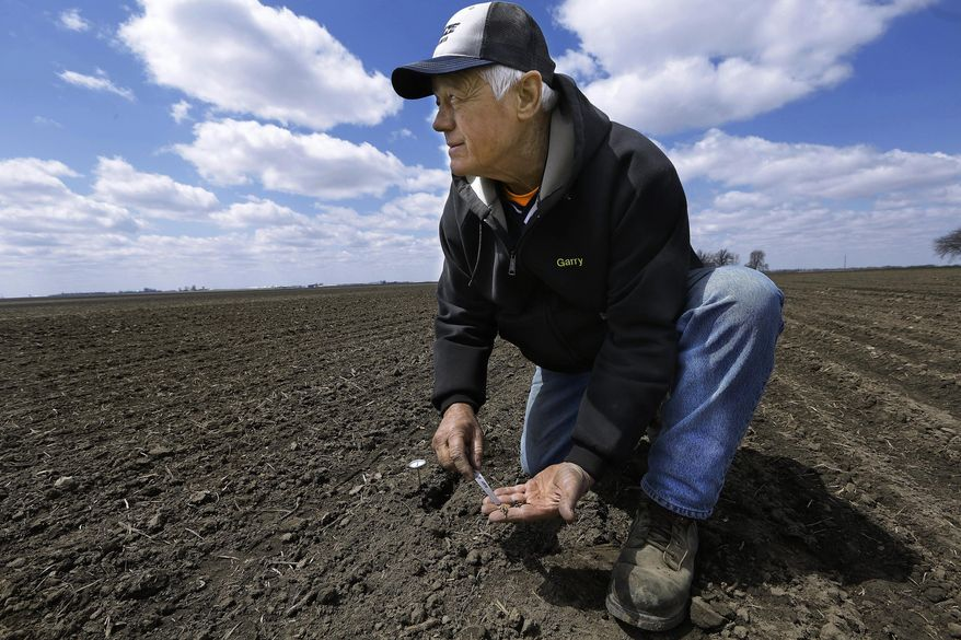 FILE - In this April 15, 2014 file photo, central Illinois corn and soybean farmer Garry Niemeyer inspects the soil temperature and the sprouting of corn seeds he planted earlier as a test in Auburn, Ill. Many central Illinois farmer still hadn't begun the annual ritual on Tuesday, April 22, 2014, because fields simply are too wet or too cold to be receptive to fragile seeds. It's a scenario playing out across much of the nation's corn belt, where efforts by farmers to get their crops in the ground still are sputtering _ similar to last year, when one of the wettest springs on record got farmers in many states off to the slowest start in decades. (AP Photo/Seth Perlman, File)