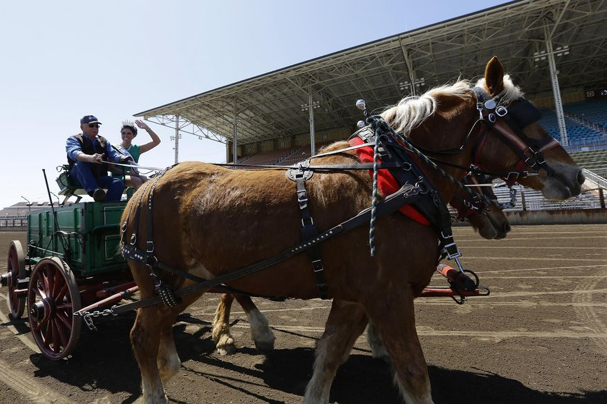 Jim Winch of Pleasant Plains, Ill., drives his team of Belgian draft horses with Summer Robbins, the 2014 Miss Illinois County Fair Queen by his side during a press preview at the Illinois State Fairgrounds Tuesday, April 22, 2014, in Springfield, Ill. The Illinois State Fair will run Aug. 7 through Aug. 17. (AP Photo/Seth Perlman)