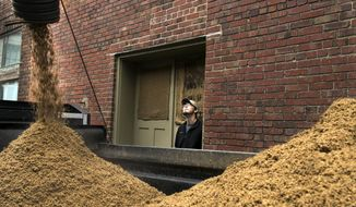 FILE - In this April 2, 2014 file photo Calvin West, from Meyer Dairy Farm, watches spent grain bound for the farm fill a trailer at Empyrean Brewing in Lincoln, Neb. The federal government is backing off proposed regulations aimed at preventing livestock contamination that brewers say would add to their costs without improving the safety of grain used to feed livestock. Many beer makers sell or give grain leftover from the brewing process to farmers, who use it as feed for dairy cows and other animals. (AP Photo/The Journal-Star, Gwyneth Roberts, File)