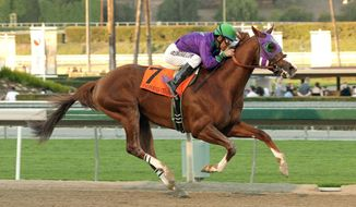 ADVANCE FOR WEEKEND EDITIONS, APRIL 26-27 - FILE - In this Jan. 25, 2014 file photo provided by Benoit Photo, California Chrome and jockey Victor Espinoza win the $250,000 California Cup Derby horse race at Santa Anita in Arcadia, Calif. A full field of 20 is expected for the 140th Kentucky Derby on May 3. California Chrome is the early favorite.  (AP Photo/Benoit Photo, File)