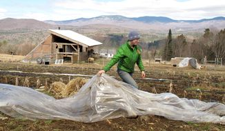 FILE - In this April 24, 2014, file photo,, Katie Spring rolls up plastic that was used to cover certain plants during the winter in a field at the Good Heart Farmstead in Worcester, Vt. Spring and her husband Edge Fuentes, who both own the farm, back the GMO labeling bill passed by the Vermont legislature. Genetically modified foods have been around for years, but most Americans have no idea if they are eating them. The Food and Drug Administration says they don't need to be labeled, so the state of Vermont has moved forward on its own. On May 8, Gov. Peter Shumlin signed legislation making the state the first to require labeling of GMOs _ technically genetically modified organisms. (AP Photo/Wilson Ring, File)