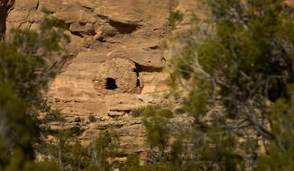 In this April 24, 2014 photo,  Pueblo III-period cliff dwellings created by the Anasazi or Ancestral Puebloan peoples between 1150 and 1300 A.D. in Recapture Canyon near Blanding in Utah. The Bureau of Land Management  closed it to motorized use in 2007. Recapture Canyon is home to dwellings, artifacts and burials left behind by Ancestral Puebloans hundreds of years ago before they mysteriously disappeared.   Environmentalists and Native Americans say the ban is needed to preserve the fragile artifacts.   (AP Photo/The Salt Lake Tribune, Leah Hogsten)  DESERET NEWS OUT; LOCAL TV OUT; MAGS OUT