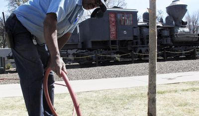 In this April 11, 2014 photo, Richard Booker, a maintenance man with the Grand Canyon Railway, uses harvested water to water trees outside a hotel in Williams, Ariz. Officials in Williams have declared a water crisis amid a drought that is quickly drying up nearby reservoirs and forcing the community to pump its only two wells to capacity. (AP Photo)