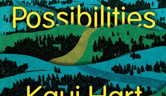 "This book cover image released by Simon and Schuster shows ""The Possibilities,"" by Kaui Hart Hemmings. (AP Photo/Simon and Schuster)"