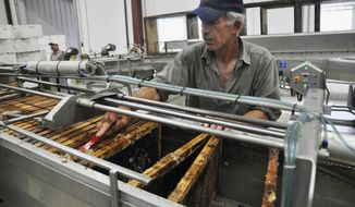 FILE - In this Aug. 20, 2013, file photo, Jaime Garcia scrapes honey off a frame at the Adee Honey Farms plant in Bruce, S.D. South Dakota honey farmers are hoping for a rebound in production this year after last summer's cool temperatures hampered the crop. (AP Photo/Dirk Lammers, File)