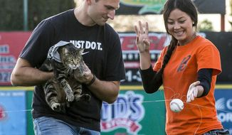 "Ryan Triantafilo helps Tara the cat throw the pitch as he held her in his arms before the Bakersfield Blaze baseball game game at Sam Lynn Ballpark Tuesday night May 20, 2014 in Bakersfield, Calif.  Tara was captured on security camera when she pounced on a dog that attacked  4-year-old Jeremy Triantafilo. The video, which has garnered 21 million YouTube views, shows the dog biting and attempting to drag the boy. Within seconds, Tara leaps out of nowhere and chases the canine away. There was a failed attempt at the game, between the Blaze and the Lancaster JetHawks, to have Tara ""throw"" the pitch using a baseball attached to a fishing line. (AP Photo/The Bakersfield Californian, Nick Ellis)   MANDATORY CREDIT"