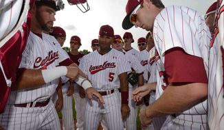 South Carolina players get charged up before an NCAA college baseball regional tournament game against Campbell in Columbia, S.C., Friday, May 30, 2014. South Carolina won 5-2. (AP Photo/ Richard Shiro)