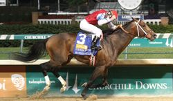 In a photo provided by Churchill Downs, Moonshine Mullin, with jockey Calvin Borel, wins the Stephen Foster Handicap horse race Saturday, June 14, 2014, at Churchill Downs in Louisville, Ky. (AP Photo/Churchill Downs/Reed Palmer Photography)
