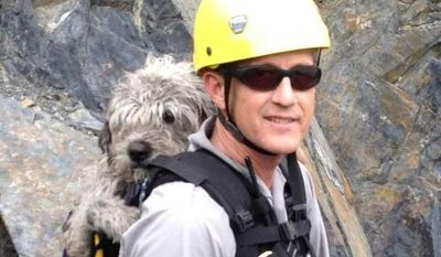 Kenai Fjords National Park Ranger John Anderson is shown with Sadie in his backpack after he and another ranger, Mark Thompson, rescued the dog from a ledge near a glacier on Monday, June 30, 2014, at Kenai Fjords National Park, Alaska. (AP Photo/National Park Service, Mark Thompson)