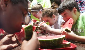 ** FILE ** Moses Sanders, 13, right, competes in the watermelon-eating contest with others in the 11-to-13 age group at Sheffield Park in Lynn Haven, Fla., on Friday, July 4, 2014. (AP Photo/The News Herald, Heather Leiphart)