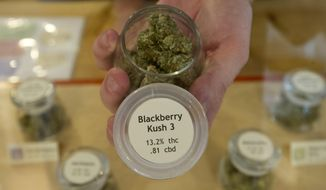 ** FILE ** In this photo taken on July 2, 2014, an employee at Bloom Well, a medical marijuana dispensary in Bend, Ore., holds a container of cannabis that is marked with the THC and CBD results after it was tested in a lab to better inform their customers on the product they are looking at. (AP Photo/The Bulletin, Ryan Brennecke)