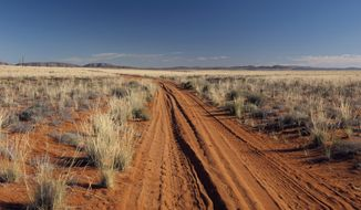 The desert roadway that leads to Namaqualand National Park, Northern Cape.