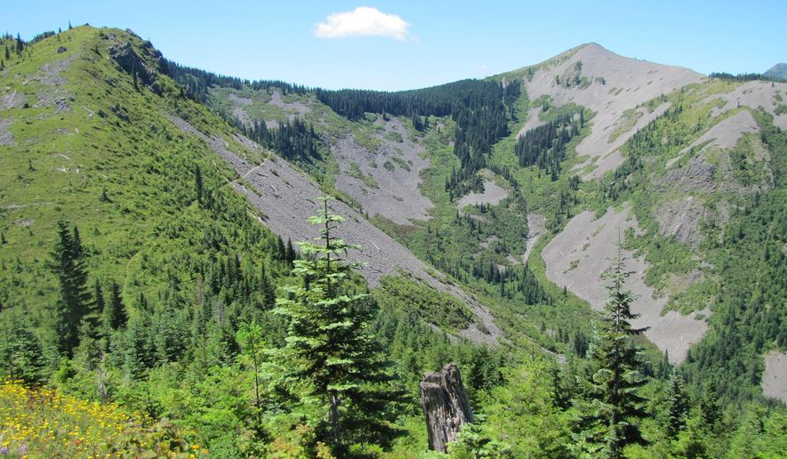This July 6, 2014 photo shows Bluff Mountain, left, and the area where a trail climbs through the forested saddle beneath Little Baldy Mountain, right, in the Gifford Pinchot National Forest in Washington state. (AP Photo/The Columbian, Allen Thomas)