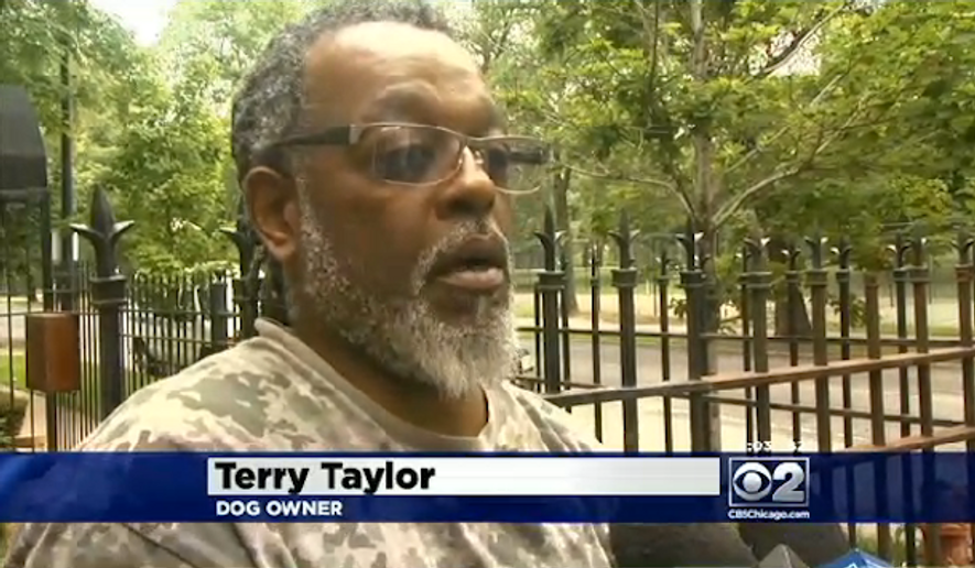 Terry Taylor is outraged after a Chicago police officer ran into his backyard and killed his 10-year-old dog while searching for a robbery suspect. (CBS Chicago)