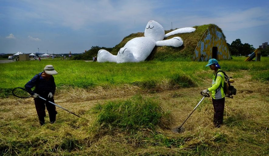 Landscapers trim grass in front of Dutch artist Florentijn Hofman's 25-meter (82-foot) white rabbit, as it leans up against an old aircraft hangar as part of the Taoyuan Land Art Festival in Taoyuan, Taiwan, Tuesday, Sept. 2, 2014. Hofman's big yellow duck drew millions of visitors as it toured the island last year and festival organizers are hoping the rabbit will do the same. The Taoyuan Land Art Festival will take place from Sept. 9-14. (AP Photo/Wally Santana)