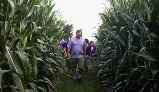 In this Aug. 28, 2014 photo, Steve Buxton walks with others in the corn growing in a maze on Buxton's Garden Farm & Flower Shop in Sullivan, Ill. Buxton worked on the design and layout of the four-acre Ribbon of Hope Corn Maize since earlier this summer. (AP Photo/Herald & Review, Lisa Morrison)