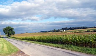 In this photo taken on Aug. 13, 2014, shows farmland along Hall School Road near Patton Farm Road in Stuarts Draft, Va., that is designated on the latest Dominion map as an alternative route for their natural gas pipeline. (AP Photo/The Staunton News Leader, Randall Wolf)