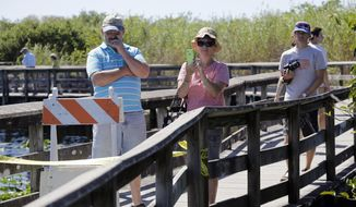 In this Friday, Oct. 17, 2014 photo, tourists take photos along the boardwalk of the Anhinga Trail where National Park Service archaeologists are doing a survey of the Anhinga Slough in Everglades National Park, Fla. Archeologists are collecting sediment, looking for artifacts which were first discovered at the site when it was dredged in 1968. (AP Photo/Lynne Sladky)
