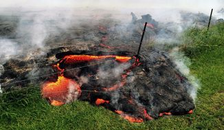 This Oct. 25, 2014, photo provided by the U.S. Geological Survey shows lava flow advancing across the pasture between the Pahoa cemetery and Apaa Street, engulfing a barbed wire fence, near the town of Pahoa on the Big Island of Hawaii. (AP Photo/U.S. Geological Survey)