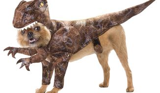Doggy Dinosaur costume for Halloween (Image from Costume Express)